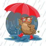Forme el búho debajo de un paraguas en la lluvia ilustración del vector
