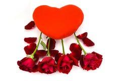 Forme el corazón y las rosas rojas en un fondo blanco Imágenes de archivo libres de regalías