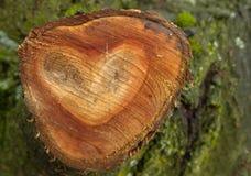 Forme en bois de coeur Photos stock