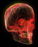 Forme fantasmagorique rouge de crâne au-dessus de noir Images stock