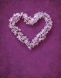 forme florale de coeur Photos stock