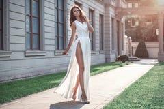 Forme a foto da mulher elegante bonita com vestir do cabelo escuro Imagens de Stock