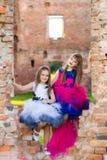 Forme la foto de dos muchachas hermosas en un fondo del ladrillo ru Fotos de archivo