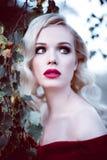 Forme a la mujer rubia joven magnífica en vestido rojo hermoso en una atmósfera de la magia del bosque del hada-cuento Retouched  imagenes de archivo