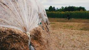 Forme para los animales del campo para el invierno La pila grande de heno o de paja cubierta con polietileno se seca debajo del c metrajes