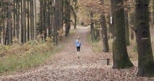 Forme physique, personnes de sport et concept sain de mode de vie - vue arrière de jeune fille fonctionnant en Autumn Park banque de vidéos