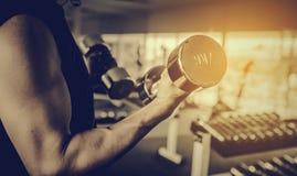 Forme physique - poids de levage d'homme musculaire puissant photos libres de droits