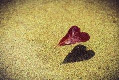 Forme rouge et ombre de coeur de feuille dans la piscine Image stock