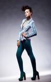 Forme a senhora na moda no pose elegante - estilo da beleza Fotos de Stock Royalty Free