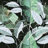 Forme a teste padrão tropical o ideal realístico das folhas da banana para f ilustração do vetor