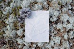 Forme vide, papier chiffonné sous les pieds dans les bois Photo libre de droits