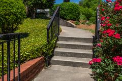 Formed concrete stairs and sidewalk with black iron railing, roses and groundcover. Horizontal aspect stock images
