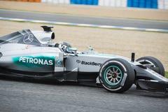 Formel 1: Felipe Massa Royaltyfria Foton