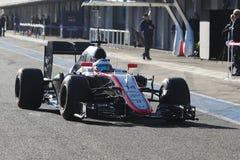 Formel 1: Fernando Alonso Royaltyfria Bilder