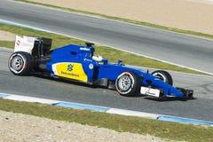 Formel 1 2015: Marcus Ericsson Royaltyfri Fotografi