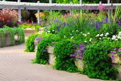 Formele tuin Stock Foto
