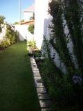 Formele tuin Stock Foto's