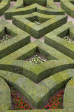 Formele tuinen bij chateau, villandry DE, de Loire, vallei, Frankrijk Royalty-vrije Stock Fotografie
