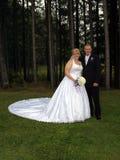 formell brudgumstående för brud Arkivfoto