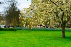 Formell vårträdgård Royaltyfria Foton