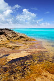 Formentera island Illetas rocky shore turquoise Royalty Free Stock Images