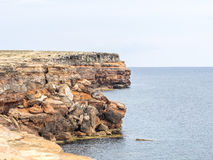 Formentera linia brzegowa zdjęcia stock