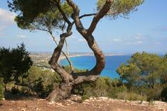 Formentera na plaży Obrazy Royalty Free