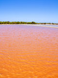 Formentera Ses Salines saltworks red water Royalty Free Stock Photos