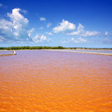 Formentera Ses Salines saltworks red water Stock Image