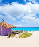 Formentera tropical purple hut on turquoise beach Royalty Free Stock Image