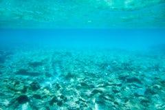 Formentera van Ibiza onderwaterrotsen in turkooise overzees Stock Fotografie