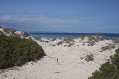 Formentera Stock Images