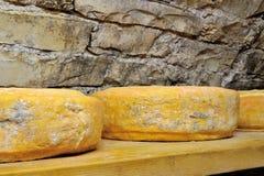 Former av ost Arkivfoton
