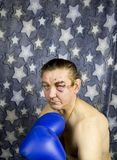 Former boxer - in the rack boxer on a star background stock photos