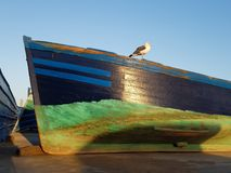 Former fishing boat with seagull royalty free stock images