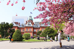 Former Hokkaido Government Office. SAPPORO, JAPAN- MAY 6, 2015 : Former Hokkaido Government Office made of red bricks and its garden with Sakura or Cherry Stock Photo