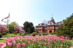 Former Hokkaido Government Office. SAPPORO, JAPAN- MAY 6, 2015 : Former Hokkaido Government Office made of red bricks and its garden with Sakura or Cherry Royalty Free Stock Photo