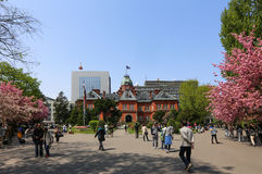 Former Hokkaido Government Office. SAPPORO, JAPAN- MAY 6, 2015 : Former Hokkaido Government Office made of red bricks and its garden with Sakura or Cherry Stock Images
