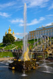 The former Imperial residence of Peterhof, the Great cascade Stock Photography