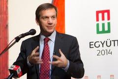 Former prime minister of Hungary, Mr. Gordon Bajnai. Gives a speech on Februar 8, 2013, Veresegyhaz, Hungary Stock Images