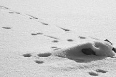 Formes abstraites de neige Images stock