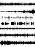 Formes d'onde sonore Photo libre de droits