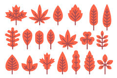 Formes de feuille plates d'automne de conception réglées Images stock
