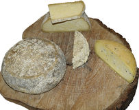 Formes de fromage de pecorino d'artisan Photographie stock libre de droits