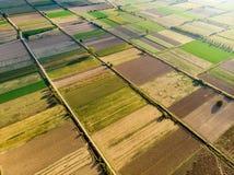Formes géométriques abstraites des colis agricoles de différentes cultures dans des couleurs vertes et jaunes Dessus aérien en ba photos stock