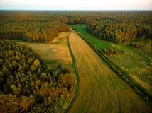Formes géométriques des colis agricoles de différentes cultures dans des couleurs vertes et jaunes Vue aérienne des terres cultiv image stock