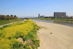 Formez la vue d'Osaka à Nara, Japon Photos libres de droits