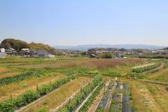 Formez la vue d'Osaka à Nara, Japon Photo libre de droits