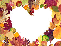 Formez le coeur des lames d'automne Photographie stock