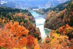 Formez le fonctionnement à travers le pont au point de vue de rivière de Tadami photographie stock libre de droits